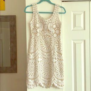 Yoana Baraschi Embroidered Lace Dress
